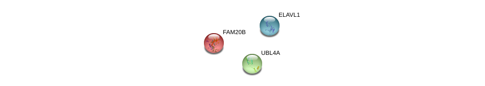 http://string-db.org/version_10/api/image/networkList?limit=0&targetmode=proteins&caller_identity=gene_cards&network_flavor=evidence&identifiers=9606.ENSP00000263733%0d%0a9606.ENSP00000385269%0d%0a9606.ENSP00000358674%0d%0a
