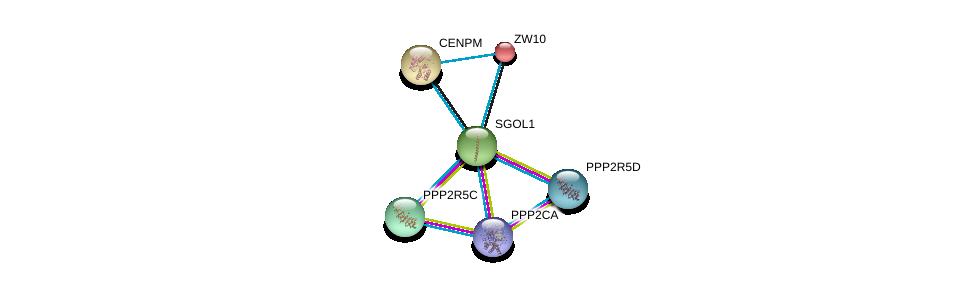 http://string-db.org/version_10/api/image/networkList?limit=0&targetmode=proteins&caller_identity=gene_cards&network_flavor=evidence&identifiers=9606.ENSP00000263753%0d%0a9606.ENSP00000418447%0d%0a9606.ENSP00000412324%0d%0a9606.ENSP00000417963%0d%0a9606.ENSP00000200135%0d%0a9606.ENSP00000215980%0d%0a