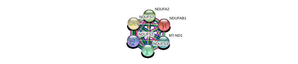http://string-db.org/version_10/api/image/networkList?limit=0&targetmode=proteins&caller_identity=gene_cards&network_flavor=evidence&identifiers=9606.ENSP00000263774%0d%0a9606.ENSP00000252102%0d%0a9606.ENSP00000007516%0d%0a9606.ENSP00000354687%0d%0a9606.ENSP00000233627%0d%0a9606.ENSP00000356972%0d%0a