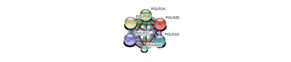http://string-db.org/version_10/api/image/networkList?limit=0&targetmode=proteins&caller_identity=gene_cards&network_flavor=evidence&identifiers=9606.ENSP00000263857%0d%0a9606.ENSP00000215587%0d%0a9606.ENSP00000263331%0d%0a9606.ENSP00000296223%0d%0a9606.ENSP00000302478%0d%0a9606.ENSP00000361465%0d%0a
