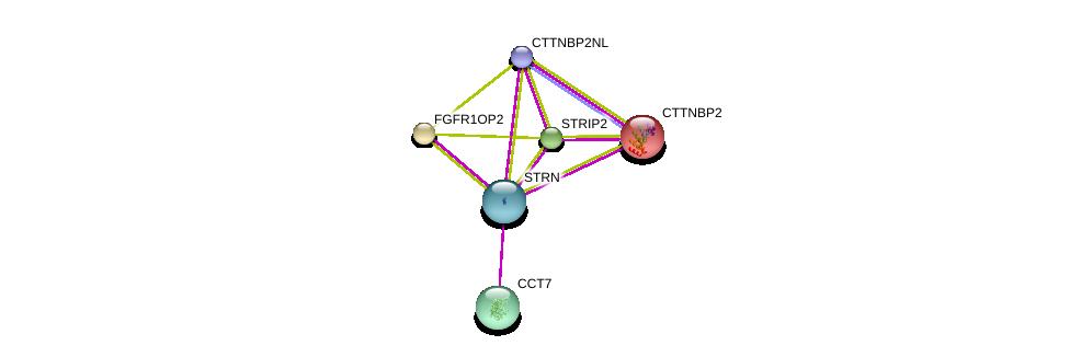 http://string-db.org/version_10/api/image/networkList?limit=0&targetmode=proteins&caller_identity=gene_cards&network_flavor=evidence&identifiers=9606.ENSP00000263918%0d%0a9606.ENSP00000160373%0d%0a9606.ENSP00000229395%0d%0a9606.ENSP00000249344%0d%0a9606.ENSP00000258091%0d%0a9606.ENSP00000271277%0d%0a