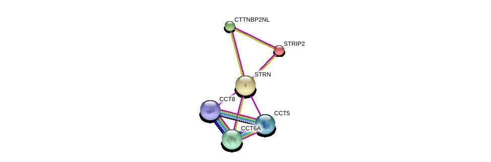 http://string-db.org/version_10/api/image/networkList?limit=0&targetmode=proteins&caller_identity=gene_cards&network_flavor=evidence&identifiers=9606.ENSP00000263918%0d%0a9606.ENSP00000249344%0d%0a9606.ENSP00000271277%0d%0a9606.ENSP00000275603%0d%0a9606.ENSP00000280326%0d%0a9606.ENSP00000286788%0d%0a