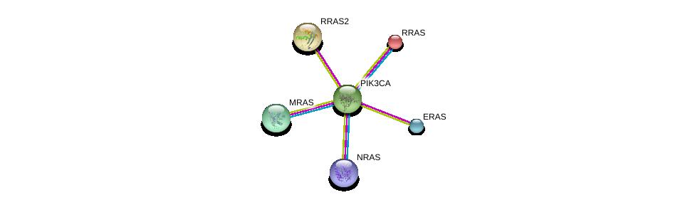 http://string-db.org/version_10/api/image/networkList?limit=0&targetmode=proteins&caller_identity=gene_cards&network_flavor=evidence&identifiers=9606.ENSP00000263967%0d%0a9606.ENSP00000289104%0d%0a9606.ENSP00000358548%0d%0a9606.ENSP00000339136%0d%0a9606.ENSP00000246792%0d%0a9606.ENSP00000256196%0d%0a
