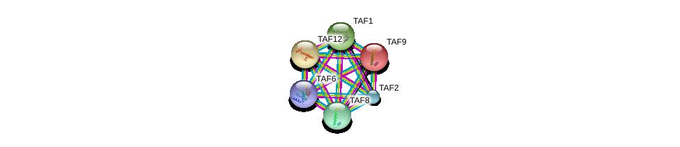 http://string-db.org/version_10/api/image/networkList?limit=0&targetmode=proteins&caller_identity=gene_cards&network_flavor=evidence&identifiers=9606.ENSP00000263974%0d%0a9606.ENSP00000362068%0d%0a9606.ENSP00000367406%0d%0a9606.ENSP00000217893%0d%0a9606.ENSP00000276072%0d%0a9606.ENSP00000399982%0d%0a