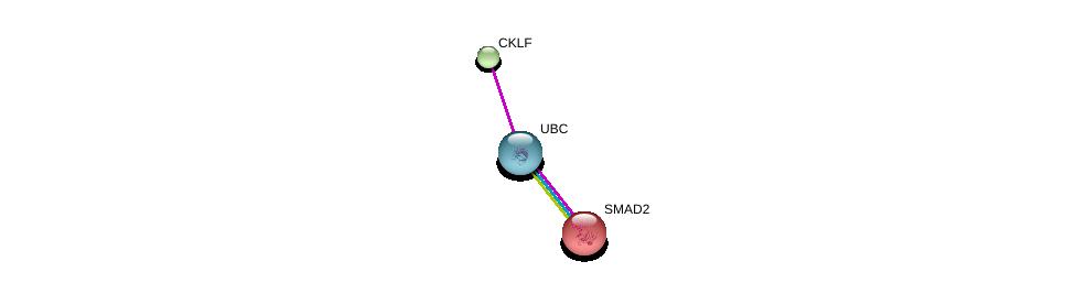 http://string-db.org/version_10/api/image/networkList?limit=0&targetmode=proteins&caller_identity=gene_cards&network_flavor=evidence&identifiers=9606.ENSP00000264001%0d%0a9606.ENSP00000344818%0d%0a9606.ENSP00000262160%0d%0a