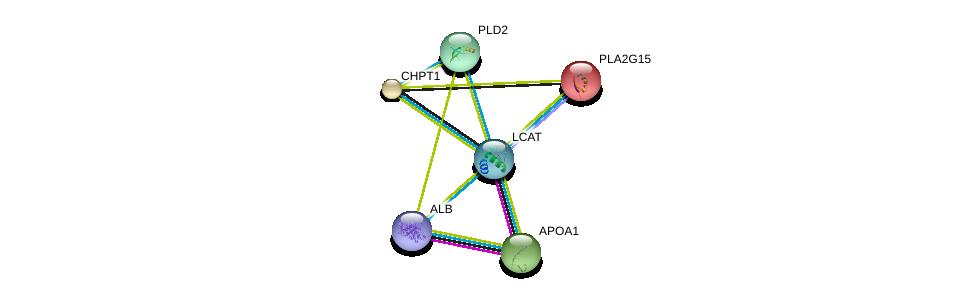 http://string-db.org/version_10/api/image/networkList?limit=0&targetmode=proteins&caller_identity=gene_cards&network_flavor=evidence&identifiers=9606.ENSP00000264005%0d%0a9606.ENSP00000236850%0d%0a9606.ENSP00000219345%0d%0a9606.ENSP00000229266%0d%0a9606.ENSP00000263088%0d%0a9606.ENSP00000295897%0d%0a