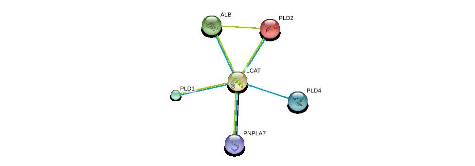 http://string-db.org/version_10/api/image/networkList?limit=0&targetmode=proteins&caller_identity=gene_cards&network_flavor=evidence&identifiers=9606.ENSP00000264005%0d%0a9606.ENSP00000384610%0d%0a9606.ENSP00000376372%0d%0a9606.ENSP00000295897%0d%0a9606.ENSP00000342793%0d%0a9606.ENSP00000263088%0d%0a