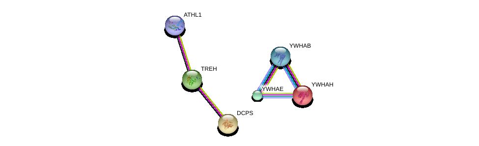 http://string-db.org/version_10/api/image/networkList?limit=0&targetmode=proteins&caller_identity=gene_cards&network_flavor=evidence&identifiers=9606.ENSP00000264029%0d%0a9606.ENSP00000263579%0d%0a9606.ENSP00000387185%0d%0a9606.ENSP00000248975%0d%0a9606.ENSP00000264335%0d%0a9606.ENSP00000300161%0d%0a