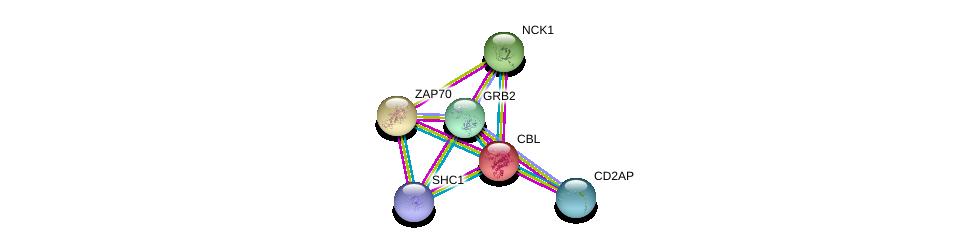 http://string-db.org/version_10/api/image/networkList?limit=0&targetmode=proteins&caller_identity=gene_cards&network_flavor=evidence&identifiers=9606.ENSP00000264033%0d%0a9606.ENSP00000339007%0d%0a9606.ENSP00000401303%0d%0a9606.ENSP00000264972%0d%0a9606.ENSP00000352264%0d%0a9606.ENSP00000288986%0d%0a