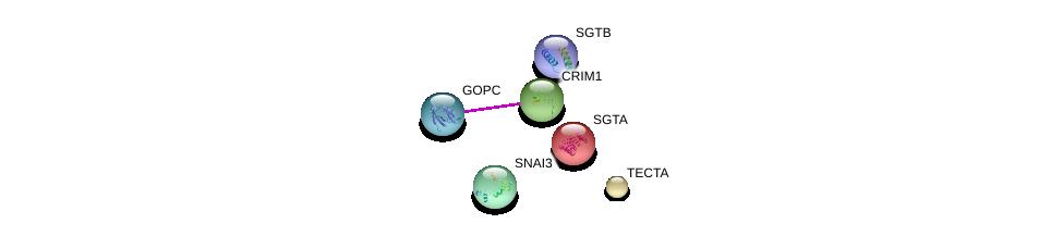 http://string-db.org/version_10/api/image/networkList?limit=0&targetmode=proteins&caller_identity=gene_cards&network_flavor=evidence&identifiers=9606.ENSP00000264037%0d%0a9606.ENSP00000357484%0d%0a9606.ENSP00000280527%0d%0a9606.ENSP00000370395%0d%0a9606.ENSP00000221566%0d%0a9606.ENSP00000327968%0d%0a
