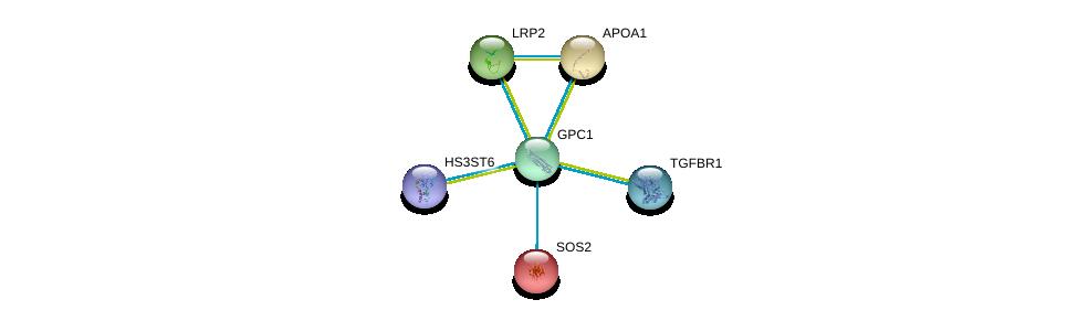 http://string-db.org/version_10/api/image/networkList?limit=0&targetmode=proteins&caller_identity=gene_cards&network_flavor=evidence&identifiers=9606.ENSP00000264039%0d%0a9606.ENSP00000364133%0d%0a9606.ENSP00000236850%0d%0a9606.ENSP00000263816%0d%0a9606.ENSP00000390354%0d%0a9606.ENSP00000216373%0d%0a