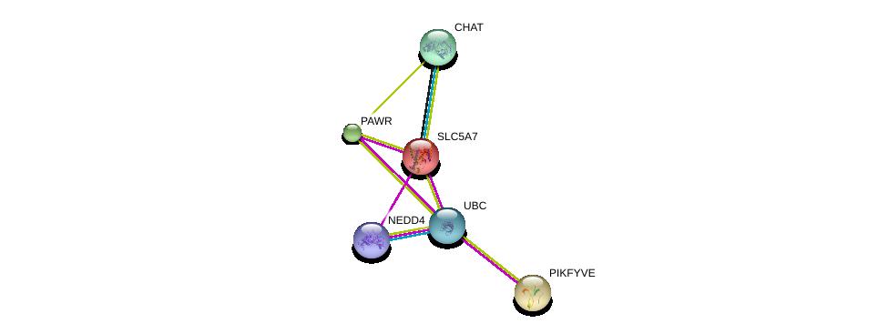 http://string-db.org/version_10/api/image/networkList?limit=0&targetmode=proteins&caller_identity=gene_cards&network_flavor=evidence&identifiers=9606.ENSP00000264047%0d%0a9606.ENSP00000337103%0d%0a9606.ENSP00000345530%0d%0a9606.ENSP00000344818%0d%0a9606.ENSP00000328088%0d%0a9606.ENSP00000264380%0d%0a