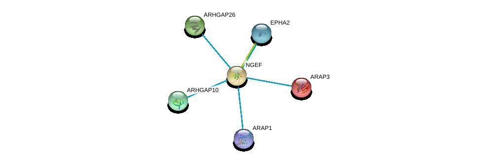http://string-db.org/version_10/api/image/networkList?limit=0&targetmode=proteins&caller_identity=gene_cards&network_flavor=evidence&identifiers=9606.ENSP00000264051%0d%0a9606.ENSP00000336923%0d%0a9606.ENSP00000377233%0d%0a9606.ENSP00000351209%0d%0a9606.ENSP00000274498%0d%0a9606.ENSP00000239440%0d%0a
