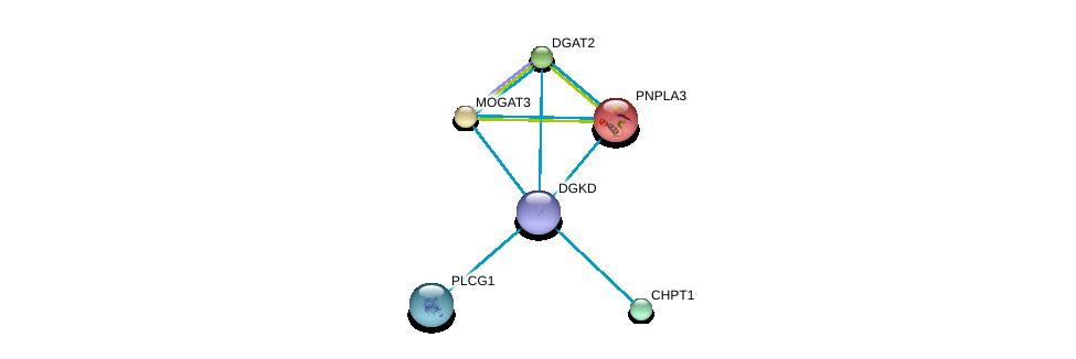 http://string-db.org/version_10/api/image/networkList?limit=0&targetmode=proteins&caller_identity=gene_cards&network_flavor=evidence&identifiers=9606.ENSP00000264057%0d%0a9606.ENSP00000216180%0d%0a9606.ENSP00000223114%0d%0a9606.ENSP00000228027%0d%0a9606.ENSP00000229266%0d%0a9606.ENSP00000244007%0d%0a