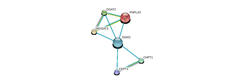 http://string-db.org/version_10/api/image/networkList?limit=0&targetmode=proteins&caller_identity=gene_cards&network_flavor=evidence&identifiers=9606.ENSP00000264057%0d%0a9606.ENSP00000349696%0d%0a9606.ENSP00000216180%0d%0a9606.ENSP00000223114%0d%0a9606.ENSP00000228027%0d%0a9606.ENSP00000229266%0d%0a