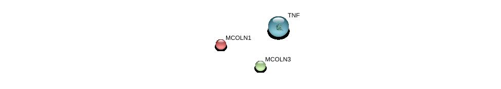 http://string-db.org/version_10/api/image/networkList?limit=0&targetmode=proteins&caller_identity=gene_cards&network_flavor=evidence&identifiers=9606.ENSP00000264079%0d%0a9606.ENSP00000304843%0d%0a9606.ENSP00000398698%0d%0a