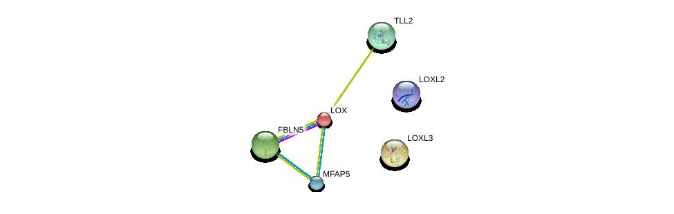 http://string-db.org/version_10/api/image/networkList?limit=0&targetmode=proteins&caller_identity=gene_cards&network_flavor=evidence&identifiers=9606.ENSP00000264094%0d%0a9606.ENSP00000350630%0d%0a9606.ENSP00000373783%0d%0a9606.ENSP00000352455%0d%0a9606.ENSP00000231004%0d%0a9606.ENSP00000345008%0d%0a