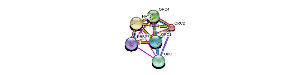 http://string-db.org/version_10/api/image/networkList?limit=0&targetmode=proteins&caller_identity=gene_cards&network_flavor=evidence&identifiers=9606.ENSP00000264108%0d%0a9606.ENSP00000344818%0d%0a9606.ENSP00000369424%0d%0a9606.ENSP00000234296%0d%0a9606.ENSP00000264169%0d%0a9606.ENSP00000360621%0d%0a
