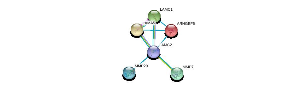 http://string-db.org/version_10/api/image/networkList?limit=0&targetmode=proteins&caller_identity=gene_cards&network_flavor=evidence&identifiers=9606.ENSP00000264144%0d%0a9606.ENSP00000250617%0d%0a9606.ENSP00000252999%0d%0a9606.ENSP00000258341%0d%0a9606.ENSP00000260227%0d%0a9606.ENSP00000260228%0d%0a