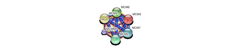 http://string-db.org/version_10/api/image/networkList?limit=0&targetmode=proteins&caller_identity=gene_cards&network_flavor=evidence&identifiers=9606.ENSP00000264156%0d%0a9606.ENSP00000353098%0d%0a9606.ENSP00000307288%0d%0a9606.ENSP00000262105%0d%0a9606.ENSP00000229854%0d%0a9606.ENSP00000265056%0d%0a
