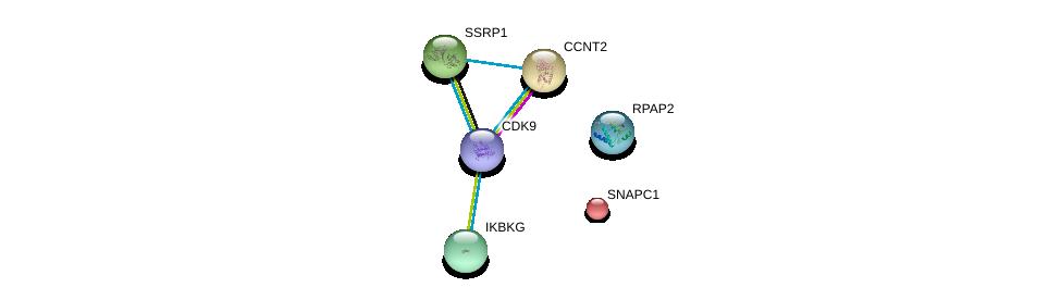 http://string-db.org/version_10/api/image/networkList?limit=0&targetmode=proteins&caller_identity=gene_cards&network_flavor=evidence&identifiers=9606.ENSP00000264157%0d%0a9606.ENSP00000362361%0d%0a9606.ENSP00000359368%0d%0a9606.ENSP00000358622%0d%0a9606.ENSP00000278412%0d%0a9606.ENSP00000216294%0d%0a