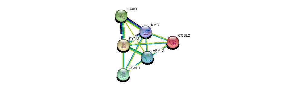http://string-db.org/version_10/api/image/networkList?limit=0&targetmode=proteins&caller_identity=gene_cards&network_flavor=evidence&identifiers=9606.ENSP00000264170%0d%0a9606.ENSP00000355517%0d%0a9606.ENSP00000294973%0d%0a9606.ENSP00000260508%0d%0a9606.ENSP00000302227%0d%0a9606.ENSP00000328938%0d%0a