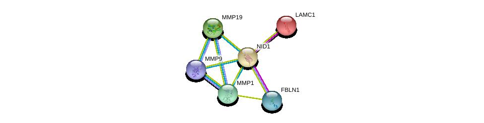 http://string-db.org/version_10/api/image/networkList?limit=0&targetmode=proteins&caller_identity=gene_cards&network_flavor=evidence&identifiers=9606.ENSP00000264187%0d%0a9606.ENSP00000258341%0d%0a9606.ENSP00000331544%0d%0a9606.ENSP00000361405%0d%0a9606.ENSP00000322788%0d%0a9606.ENSP00000313437%0d%0a