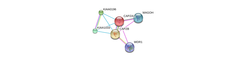http://string-db.org/version_10/api/image/networkList?limit=0&targetmode=proteins&caller_identity=gene_cards&network_flavor=evidence&identifiers=9606.ENSP00000264202%0d%0a9606.ENSP00000360525%0d%0a9606.ENSP00000263168%0d%0a9606.ENSP00000427687%0d%0a9606.ENSP00000318016%0d%0a9606.ENSP00000328062%0d%0a