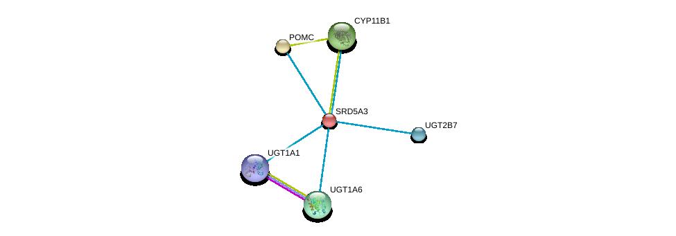 http://string-db.org/version_10/api/image/networkList?limit=0&targetmode=proteins&caller_identity=gene_cards&network_flavor=evidence&identifiers=9606.ENSP00000264228%0d%0a9606.ENSP00000264708%0d%0a9606.ENSP00000292427%0d%0a9606.ENSP00000303174%0d%0a9606.ENSP00000304811%0d%0a9606.ENSP00000304845%0d%0a