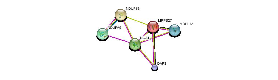http://string-db.org/version_10/api/image/networkList?limit=0&targetmode=proteins&caller_identity=gene_cards&network_flavor=evidence&identifiers=9606.ENSP00000264230%0d%0a9606.ENSP00000261413%0d%0a9606.ENSP00000263774%0d%0a9606.ENSP00000266544%0d%0a9606.ENSP00000333837%0d%0a9606.ENSP00000341692%0d%0a