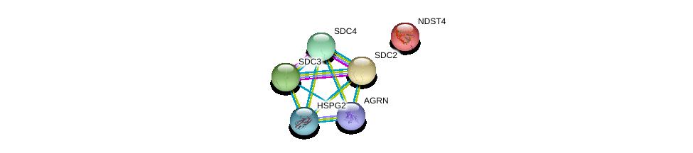 http://string-db.org/version_10/api/image/networkList?limit=0&targetmode=proteins&caller_identity=gene_cards&network_flavor=evidence&identifiers=9606.ENSP00000264363%0d%0a9606.ENSP00000344468%0d%0a9606.ENSP00000361818%0d%0a9606.ENSP00000307046%0d%0a9606.ENSP00000368678%0d%0a9606.ENSP00000363827%0d%0a