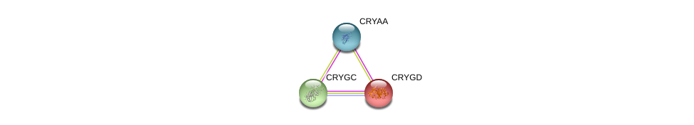 http://string-db.org/version_10/api/image/networkList?limit=0&targetmode=proteins&caller_identity=gene_cards&network_flavor=evidence&identifiers=9606.ENSP00000264376%0d%0a9606.ENSP00000291554%0d%0a9606.ENSP00000282141%0d%0a