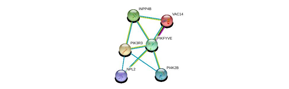 http://string-db.org/version_10/api/image/networkList?limit=0&targetmode=proteins&caller_identity=gene_cards&network_flavor=evidence&identifiers=9606.ENSP00000264380%0d%0a9606.ENSP00000261776%0d%0a9606.ENSP00000264864%0d%0a9606.ENSP00000262992%0d%0a9606.ENSP00000262741%0d%0a9606.ENSP00000359683%0d%0a