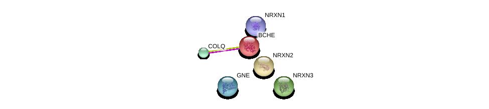 http://string-db.org/version_10/api/image/networkList?limit=0&targetmode=proteins&caller_identity=gene_cards&network_flavor=evidence&identifiers=9606.ENSP00000264381%0d%0a9606.ENSP00000379839%0d%0a9606.ENSP00000373298%0d%0a9606.ENSP00000265459%0d%0a9606.ENSP00000385142%0d%0a9606.ENSP00000338349%0d%0a