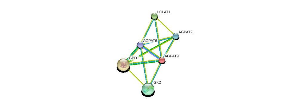 http://string-db.org/version_10/api/image/networkList?limit=0&targetmode=proteins&caller_identity=gene_cards&network_flavor=evidence&identifiers=9606.ENSP00000264409%0d%0a9606.ENSP00000351706%0d%0a9606.ENSP00000301149%0d%0a9606.ENSP00000380184%0d%0a9606.ENSP00000310551%0d%0a9606.ENSP00000360761%0d%0a
