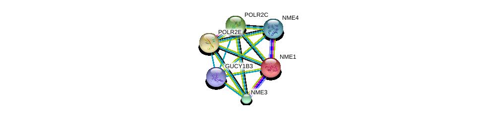 http://string-db.org/version_10/api/image/networkList?limit=0&targetmode=proteins&caller_identity=gene_cards&network_flavor=evidence&identifiers=9606.ENSP00000264424%0d%0a9606.ENSP00000013034%0d%0a9606.ENSP00000215587%0d%0a9606.ENSP00000219252%0d%0a9606.ENSP00000219302%0d%0a9606.ENSP00000219479%0d%0a