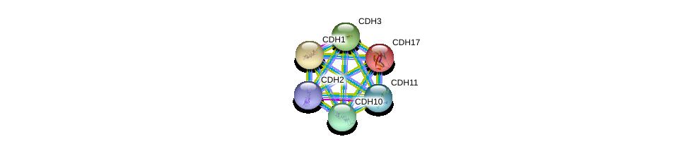 http://string-db.org/version_10/api/image/networkList?limit=0&targetmode=proteins&caller_identity=gene_cards&network_flavor=evidence&identifiers=9606.ENSP00000264463%0d%0a9606.ENSP00000027335%0d%0a9606.ENSP00000261769%0d%0a9606.ENSP00000264012%0d%0a9606.ENSP00000268603%0d%0a9606.ENSP00000269141%0d%0a