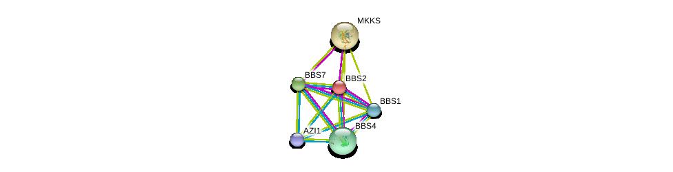 http://string-db.org/version_10/api/image/networkList?limit=0&targetmode=proteins&caller_identity=gene_cards&network_flavor=evidence&identifiers=9606.ENSP00000264499%0d%0a9606.ENSP00000245157%0d%0a9606.ENSP00000393583%0d%0a9606.ENSP00000268057%0d%0a9606.ENSP00000317469%0d%0a9606.ENSP00000246062%0d%0a