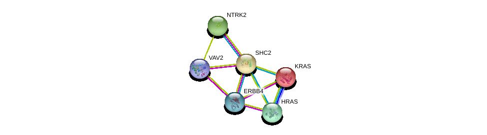 http://string-db.org/version_10/api/image/networkList?limit=0&targetmode=proteins&caller_identity=gene_cards&network_flavor=evidence&identifiers=9606.ENSP00000264554%0d%0a9606.ENSP00000342235%0d%0a9606.ENSP00000277120%0d%0a9606.ENSP00000360916%0d%0a9606.ENSP00000256078%0d%0a9606.ENSP00000309845%0d%0a