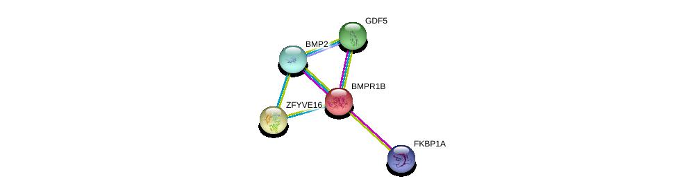 http://string-db.org/version_10/api/image/networkList?limit=0&targetmode=proteins&caller_identity=gene_cards&network_flavor=evidence&identifiers=9606.ENSP00000264568%0d%0a9606.ENSP00000368104%0d%0a9606.ENSP00000363489%0d%0a9606.ENSP00000371138%0d%0a9606.ENSP00000371138%0d%0a9606.ENSP00000337159%0d%0a