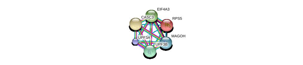 http://string-db.org/version_10/api/image/networkList?limit=0&targetmode=proteins&caller_identity=gene_cards&network_flavor=evidence&identifiers=9606.ENSP00000264645%0d%0a9606.ENSP00000269349%0d%0a9606.ENSP00000276201%0d%0a9606.ENSP00000360525%0d%0a9606.ENSP00000364448%0d%0a9606.ENSP00000196551%0d%0a