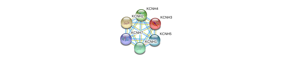http://string-db.org/version_10/api/image/networkList?limit=0&targetmode=proteins&caller_identity=gene_cards&network_flavor=evidence&identifiers=9606.ENSP00000264661%0d%0a9606.ENSP00000321427%0d%0a9606.ENSP00000257981%0d%0a9606.ENSP00000271751%0d%0a9606.ENSP00000331727%0d%0a9606.ENSP00000262186%0d%0a