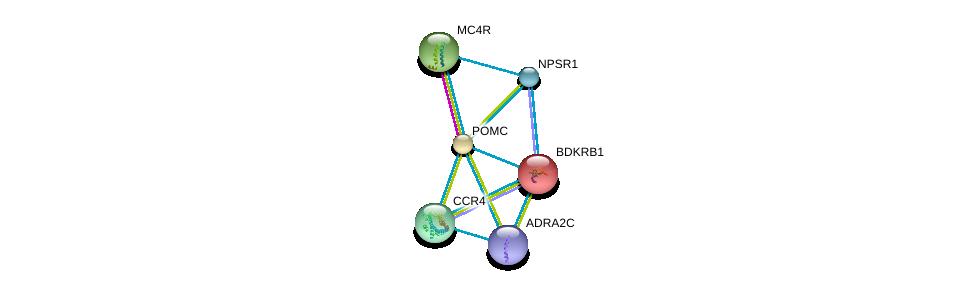 http://string-db.org/version_10/api/image/networkList?limit=0&targetmode=proteins&caller_identity=gene_cards&network_flavor=evidence&identifiers=9606.ENSP00000264708%0d%0a9606.ENSP00000299766%0d%0a9606.ENSP00000352839%0d%0a9606.ENSP00000332659%0d%0a9606.ENSP00000386069%0d%0a9606.ENSP00000216629%0d%0a