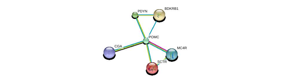 http://string-db.org/version_10/api/image/networkList?limit=0&targetmode=proteins&caller_identity=gene_cards&network_flavor=evidence&identifiers=9606.ENSP00000264708%0d%0a9606.ENSP00000299766%0d%0a9606.ENSP00000358595%0d%0a9606.ENSP00000019103%0d%0a9606.ENSP00000216629%0d%0a9606.ENSP00000217305%0d%0a