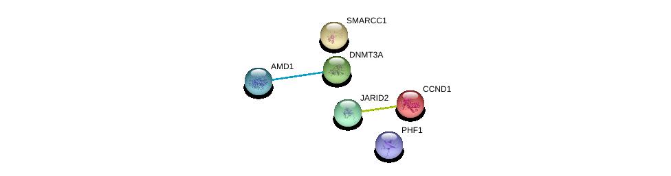 http://string-db.org/version_10/api/image/networkList?limit=0&targetmode=proteins&caller_identity=gene_cards&network_flavor=evidence&identifiers=9606.ENSP00000264709%0d%0a9606.ENSP00000254480%0d%0a9606.ENSP00000357880%0d%0a9606.ENSP00000363640%0d%0a9606.ENSP00000227507%0d%0a9606.ENSP00000341280%0d%0a
