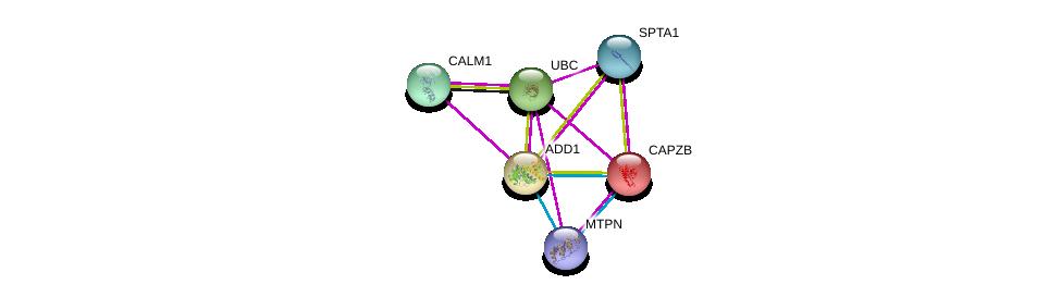 http://string-db.org/version_10/api/image/networkList?limit=0&targetmode=proteins&caller_identity=gene_cards&network_flavor=evidence&identifiers=9606.ENSP00000264758%0d%0a9606.ENSP00000357130%0d%0a9606.ENSP00000349467%0d%0a9606.ENSP00000344818%0d%0a9606.ENSP00000376800%0d%0a9606.ENSP00000264202%0d%0a