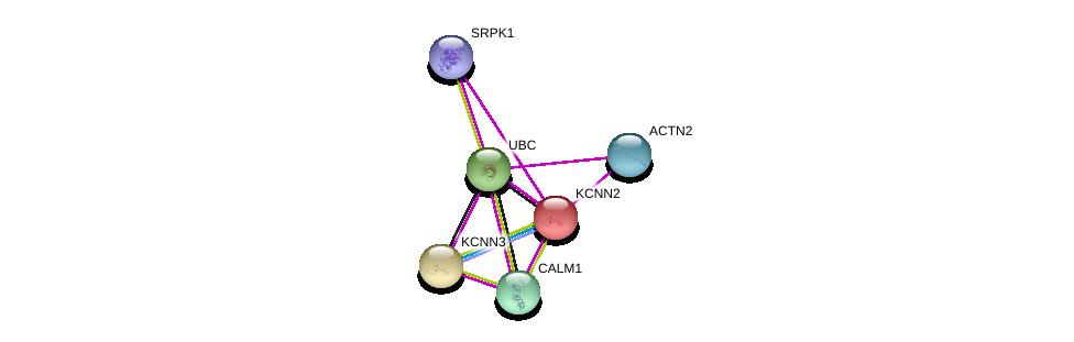 http://string-db.org/version_10/api/image/networkList?limit=0&targetmode=proteins&caller_identity=gene_cards&network_flavor=evidence&identifiers=9606.ENSP00000264773%0d%0a9606.ENSP00000271915%0d%0a9606.ENSP00000349467%0d%0a9606.ENSP00000355537%0d%0a9606.ENSP00000344818%0d%0a9606.ENSP00000362931%0d%0a