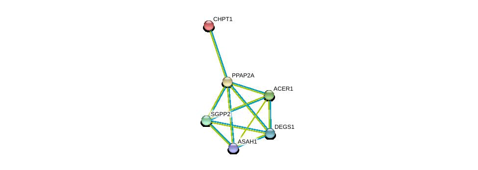 http://string-db.org/version_10/api/image/networkList?limit=0&targetmode=proteins&caller_identity=gene_cards&network_flavor=evidence&identifiers=9606.ENSP00000264775%0d%0a9606.ENSP00000315137%0d%0a9606.ENSP00000229266%0d%0a9606.ENSP00000316476%0d%0a9606.ENSP00000371152%0d%0a9606.ENSP00000301452%0d%0a