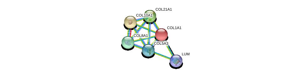 http://string-db.org/version_10/api/image/networkList?limit=0&targetmode=proteins&caller_identity=gene_cards&network_flavor=evidence&identifiers=9606.ENSP00000264828%0d%0a9606.ENSP00000225964%0d%0a9606.ENSP00000243222%0d%0a9606.ENSP00000244728%0d%0a9606.ENSP00000261037%0d%0a9606.ENSP00000266718%0d%0a