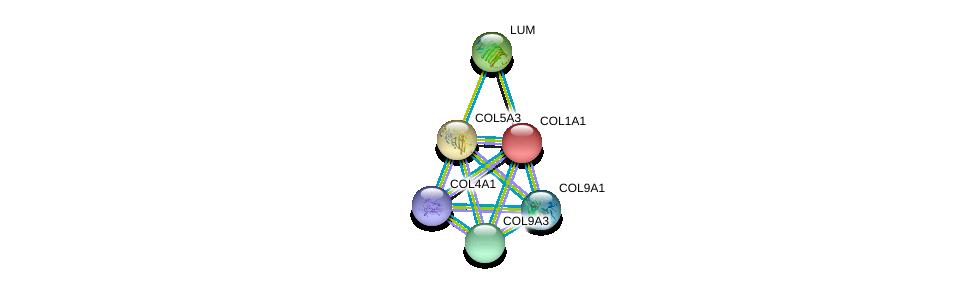 http://string-db.org/version_10/api/image/networkList?limit=0&targetmode=proteins&caller_identity=gene_cards&network_flavor=evidence&identifiers=9606.ENSP00000264828%0d%0a9606.ENSP00000364979%0d%0a9606.ENSP00000266718%0d%0a9606.ENSP00000341640%0d%0a9606.ENSP00000349790%0d%0a9606.ENSP00000225964%0d%0a